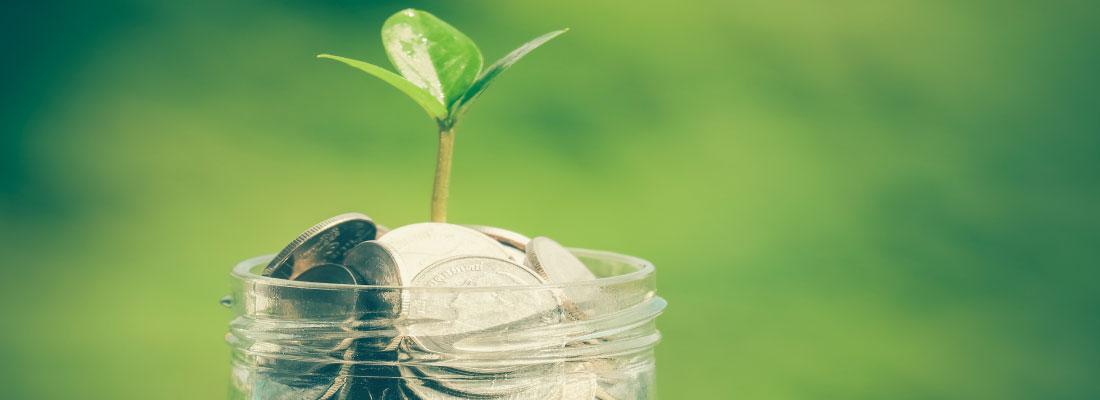 cómo puedo aumentar mi patrimonio