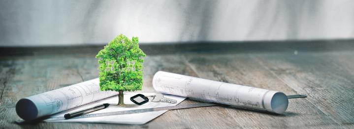 Corredores de propiedades: ¿Qué debes esperar de ellos?