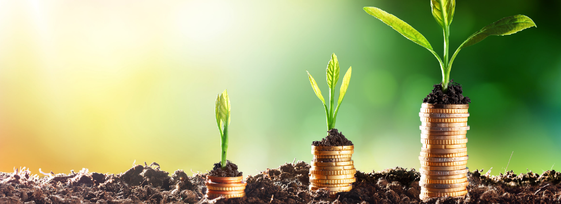 Mejora tus finanzas confiando en tus instintos